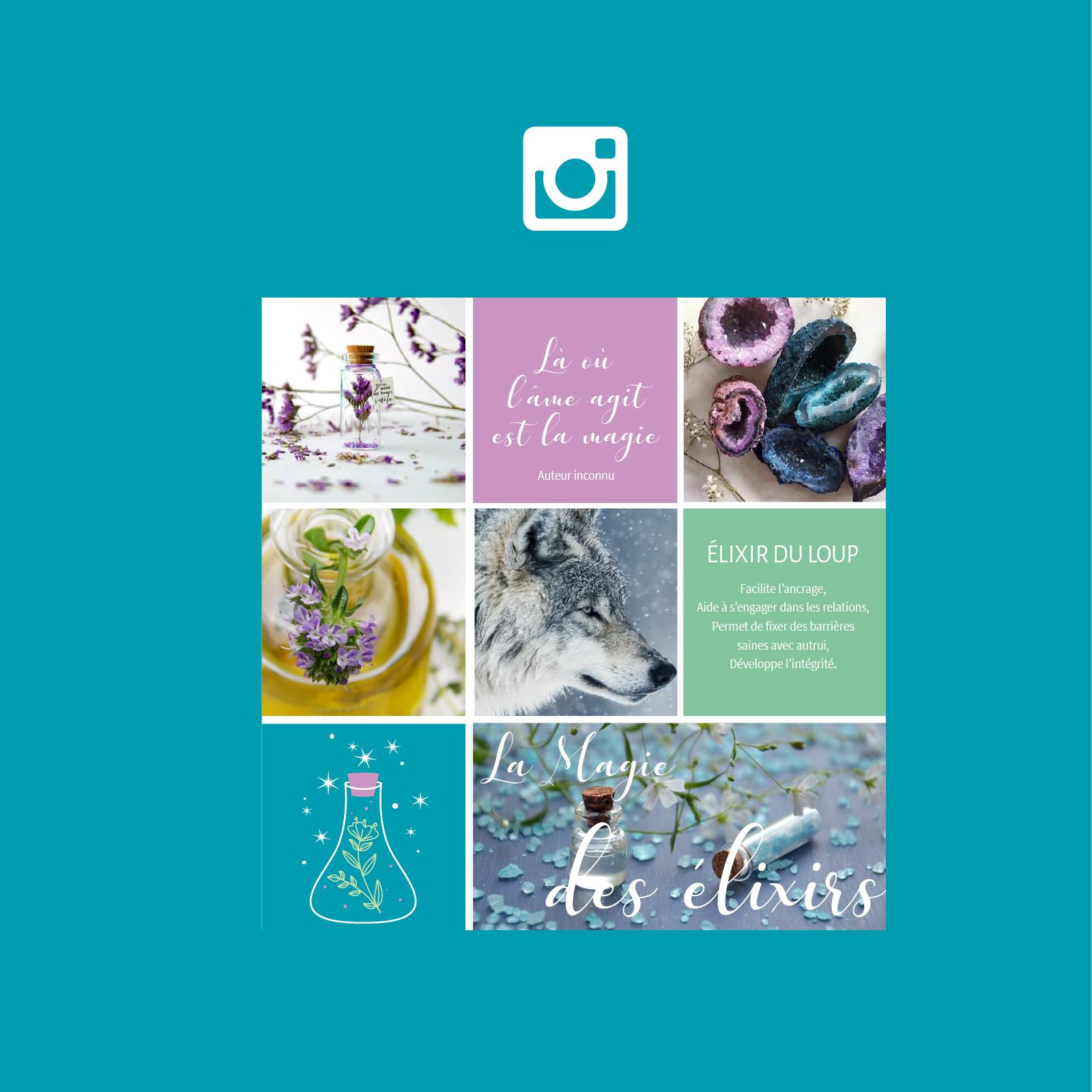 image-portfolio-aurelie-berard3